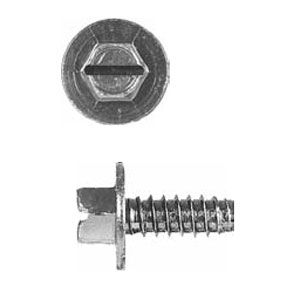 "1/4"" Ford License Plate Screws (50 pack)"